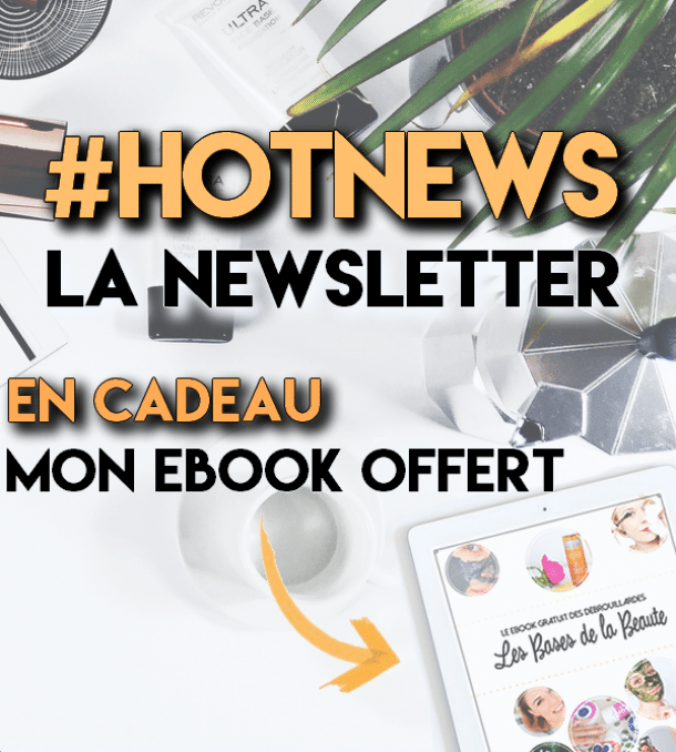 newsletter ladebrouillarde ebook