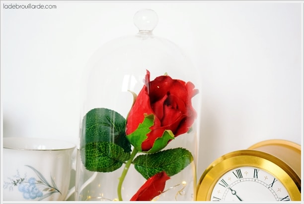 diy rose eternelle belle et la bete disney