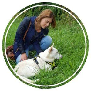 Adopter un chien – les 5 à prendre en compte avant de sauter le pas